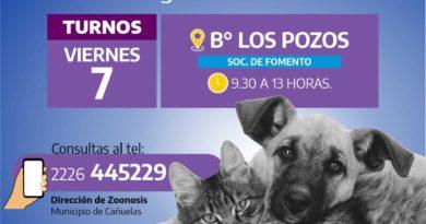 Los Pozos: se realizará una campaña de vacunación y castración animal.